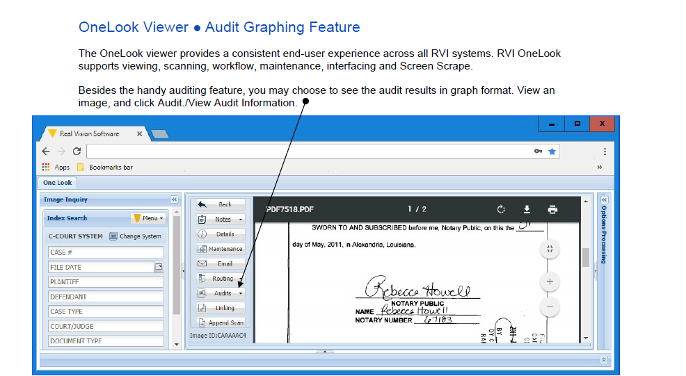 OneLook Audit Graphing Feature